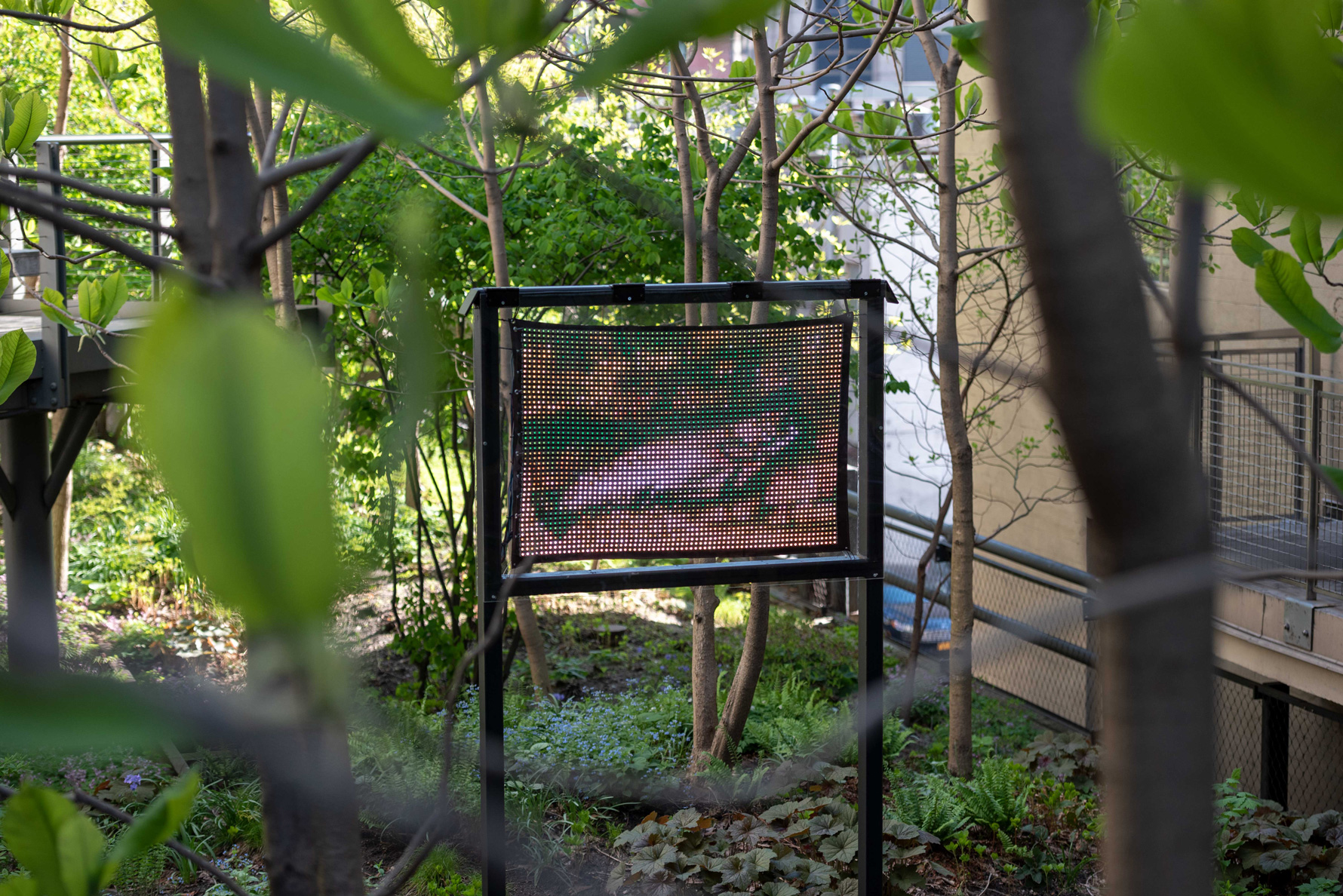 Ei Arakawa, <i>IN VINCULIS FACIEBAT (Gustave Courbet, La truite, 1873)</i>, 2019, an image of a trouth in one of the High Line gardens